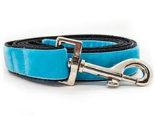 Load image into Gallery viewer, Hendrix Extra Wide Martingale Dog Collar & Sky Blue Velvet Leash
