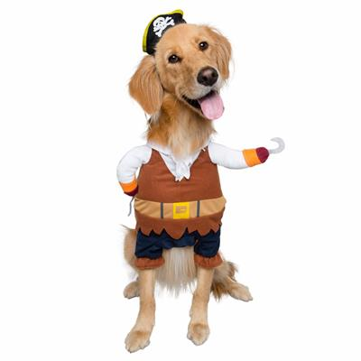 Pirate Dog and Cat Costume