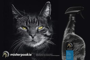 Pet Stain Remover & Odor Eliminator Cleaner