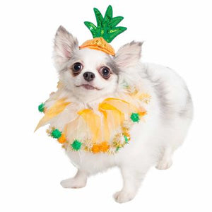 Pineapple Hat & Collar Set for Dogs and Cats