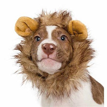 Load image into Gallery viewer, Lion Mane Costume for Small Dogs
