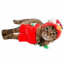 Load image into Gallery viewer, Santa Elmo Cat Costume Dog or Cat