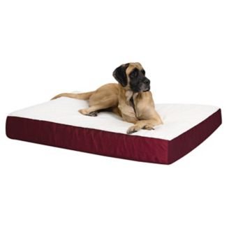 Quiet Time Double Thick Ortho Dog Bed