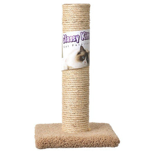 Classy Kitty Cat Sisal Scratching Post - PetStoreNMore