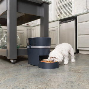 PetSafe Smart Feed Automatic Dog and Cat Feeder, 2nd Generation - PetStoreNMore