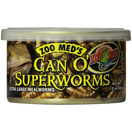 Zoo Med Can O Superworms Extra Large Mealworms - PetStoreNMore