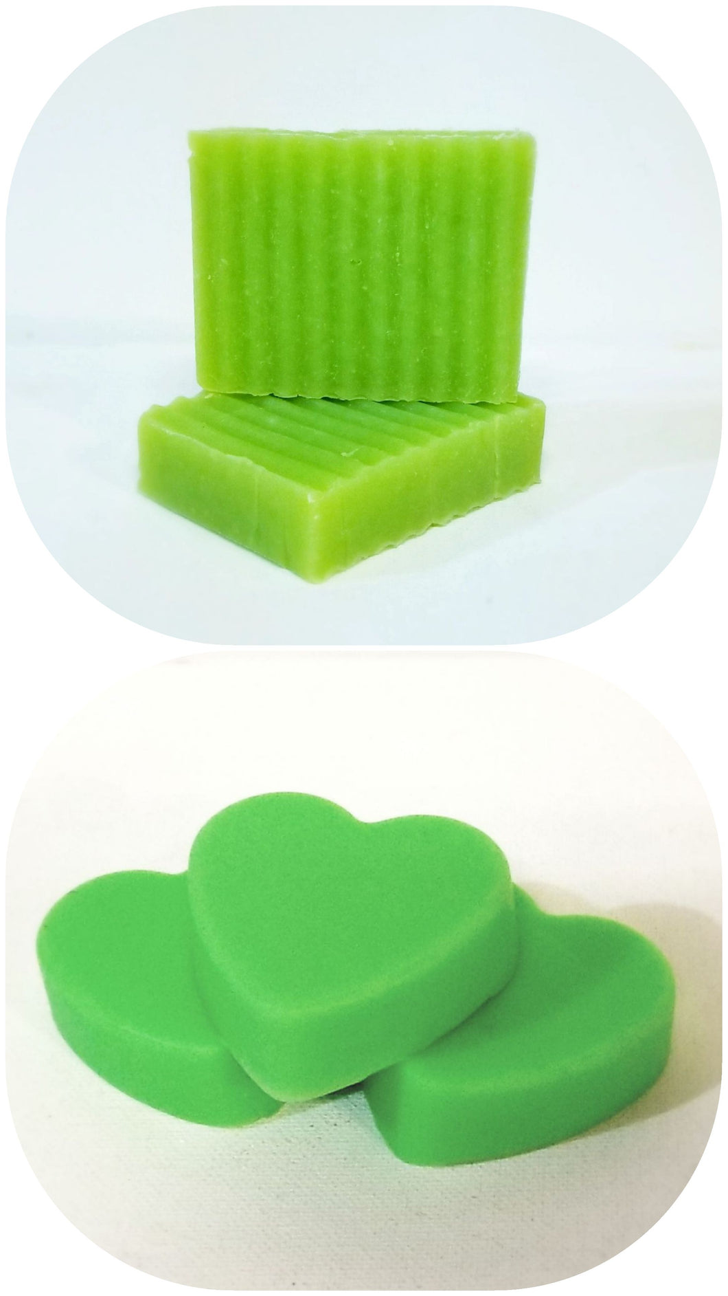 Beach Please ☆ Solid Shampoo + Conditioner Bundle