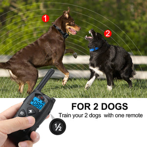 Casifor Dog Training Collar for 2 Dogs, Professional Choice