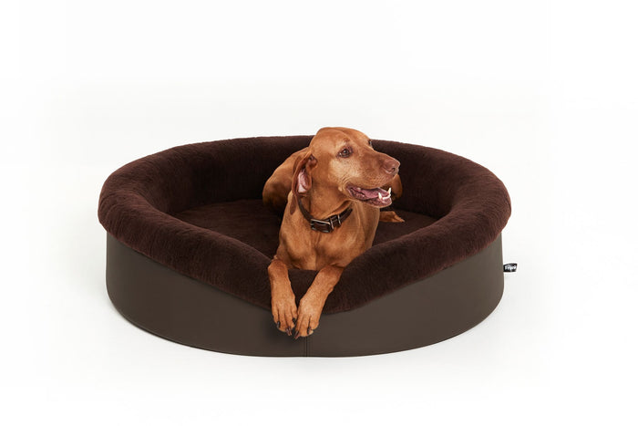 How to choose the best quality dog bed