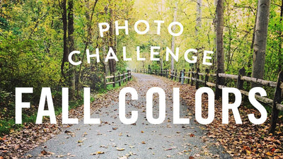 Photo Challenge: Fall Colors