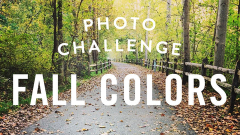 Photo Challenge: Fall Colors - Vote for Your Fave!