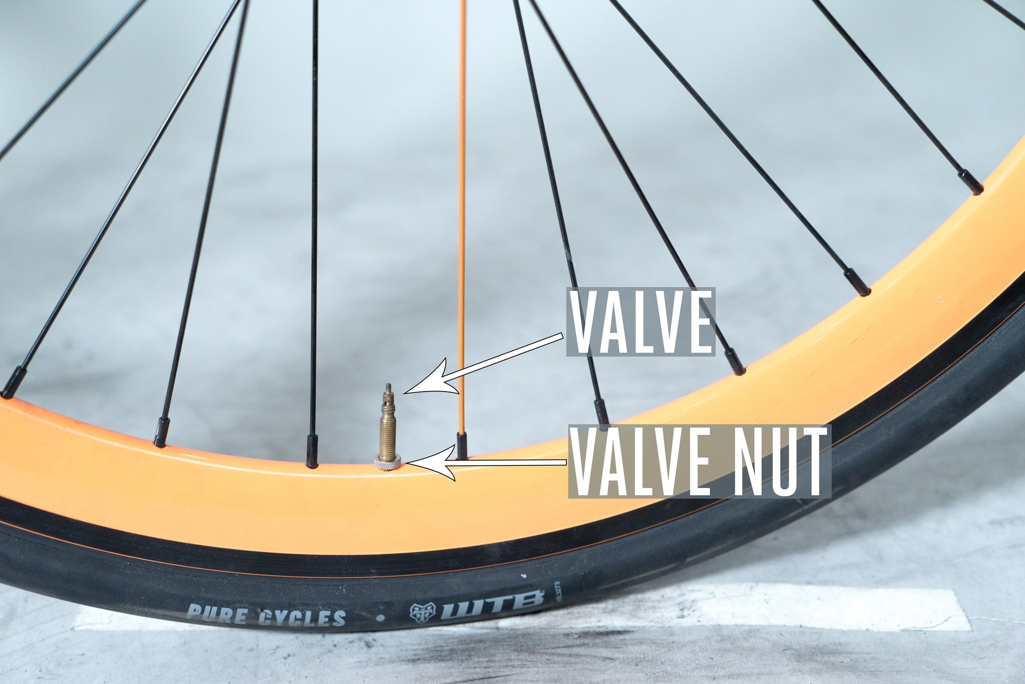 Will There Someday Be Bike In >> Valve Nuts Or Nah Pure Cycles