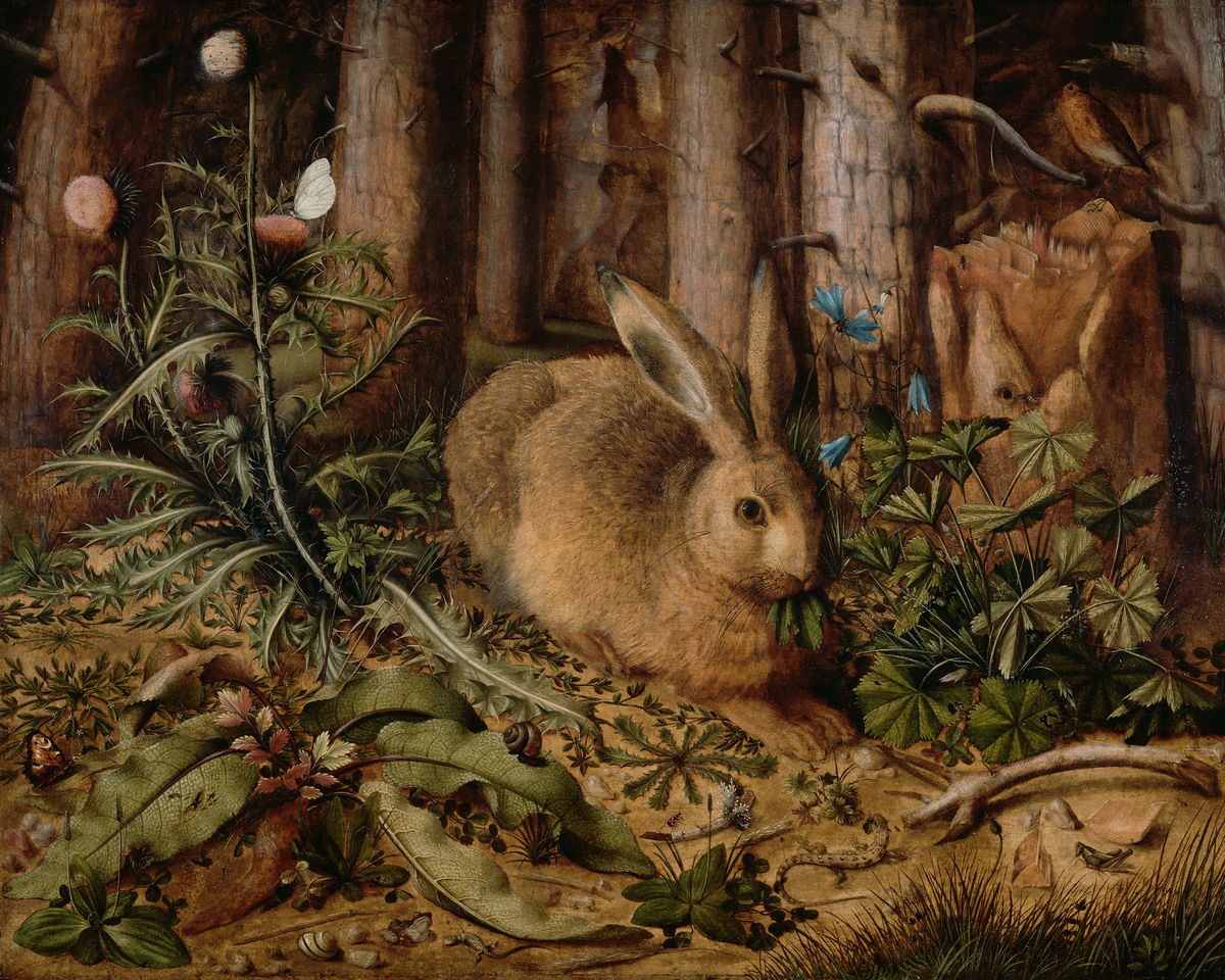 A Hare in the Forest by  - c.1591