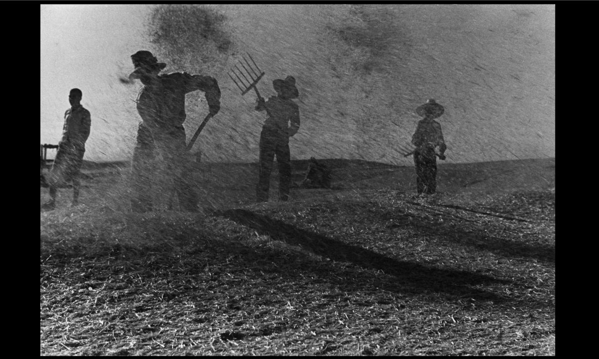 Agricultural Workers Throw Grain in the Aragon Region by Gerda Taro - 1936