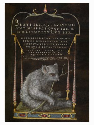 A Sloth by Joris Hoefnagel & Georg Bocskay - 1562