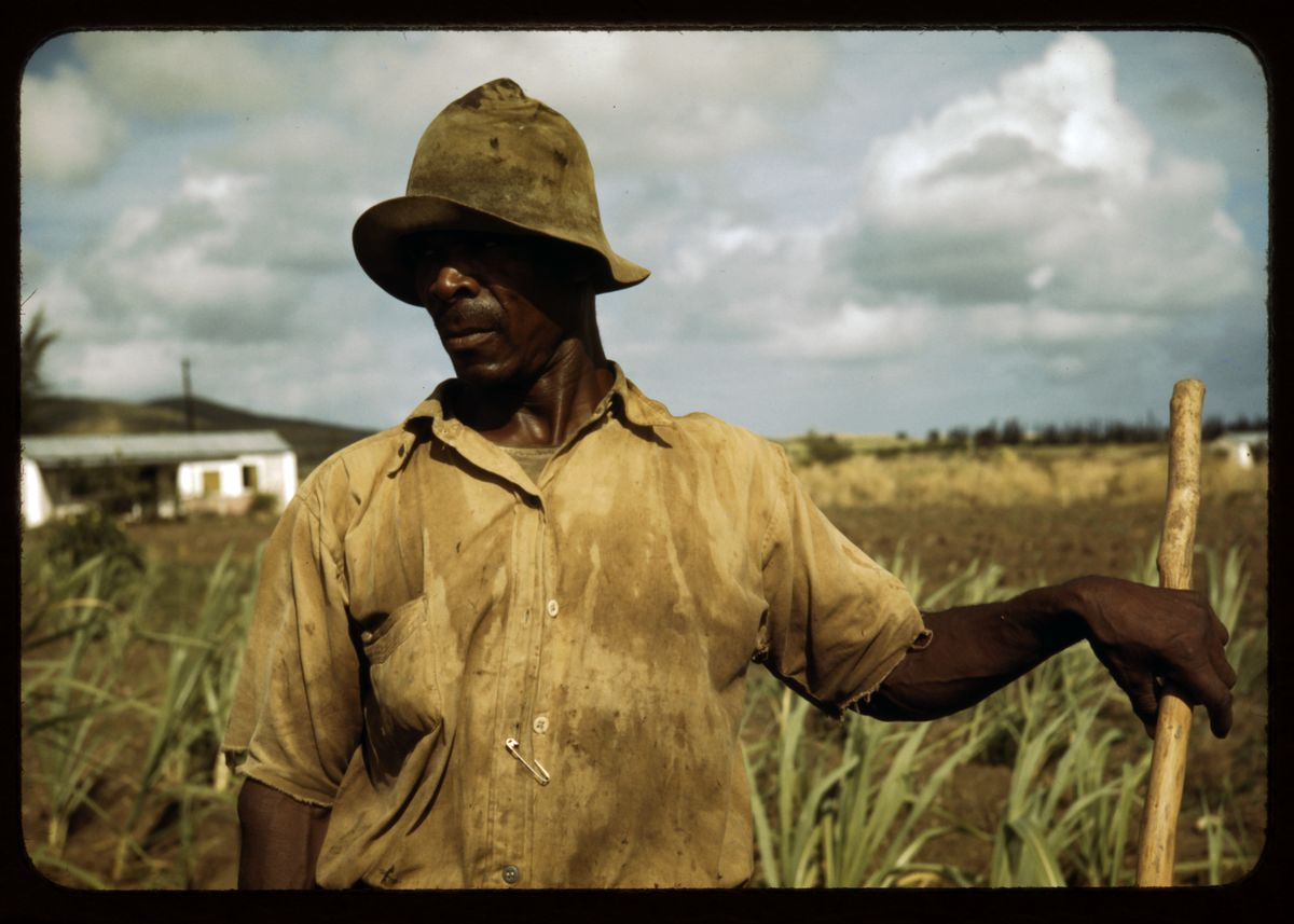 Farmer in Frederiksted, St. Croix, Virgin Islands by Jack Delano - 1941.