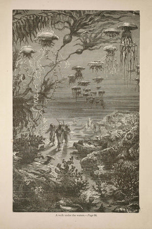 The Underwater Landscape of Crespo Island by Édouard Riou and Alphonse de Neuville - 1871