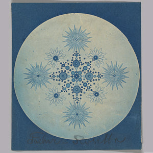 Frustules of Diatoms by Julius Weisner - 1870