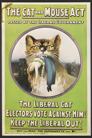 The Cat and Mouse Act - 1913