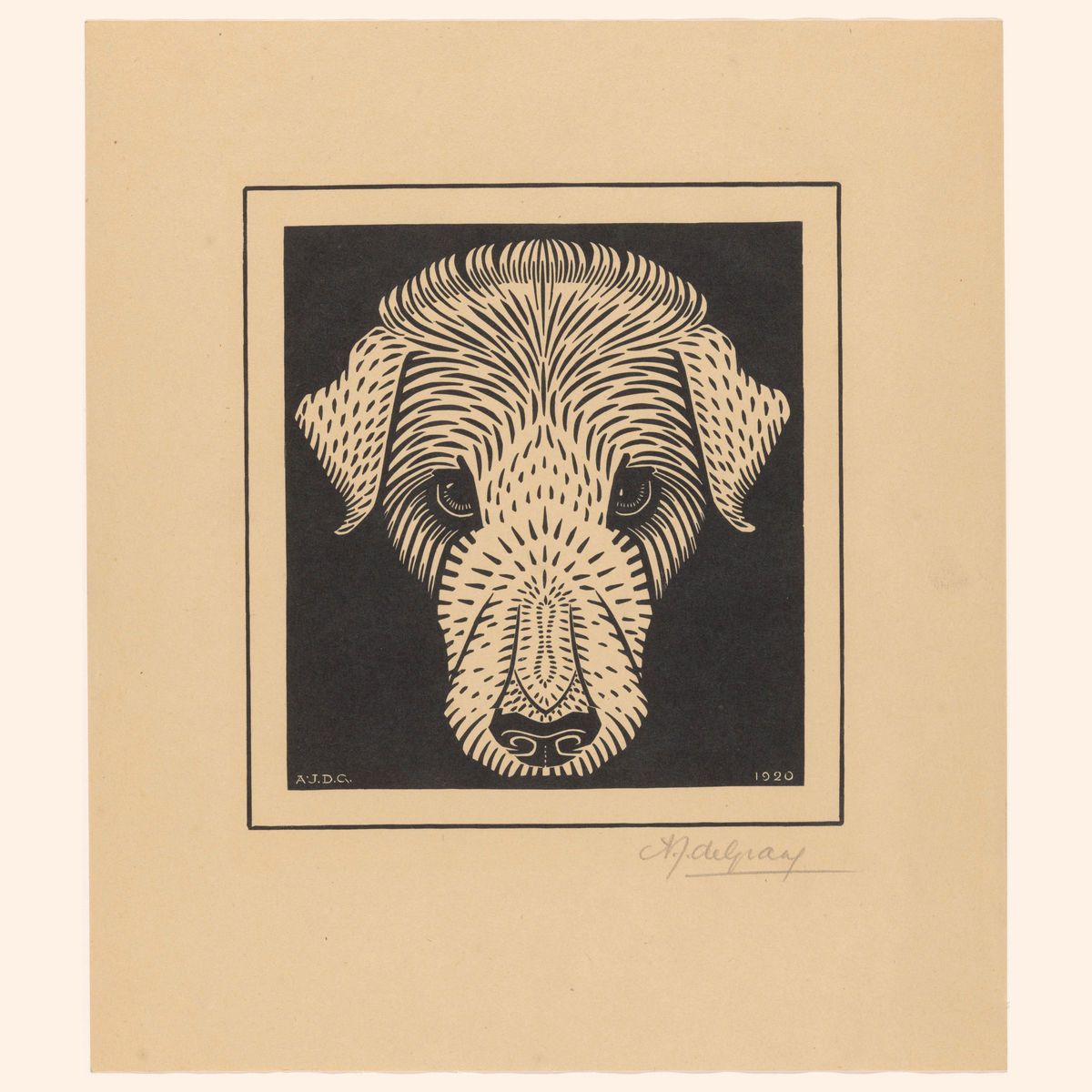 Dog's Head by Julie de Graag - 1920