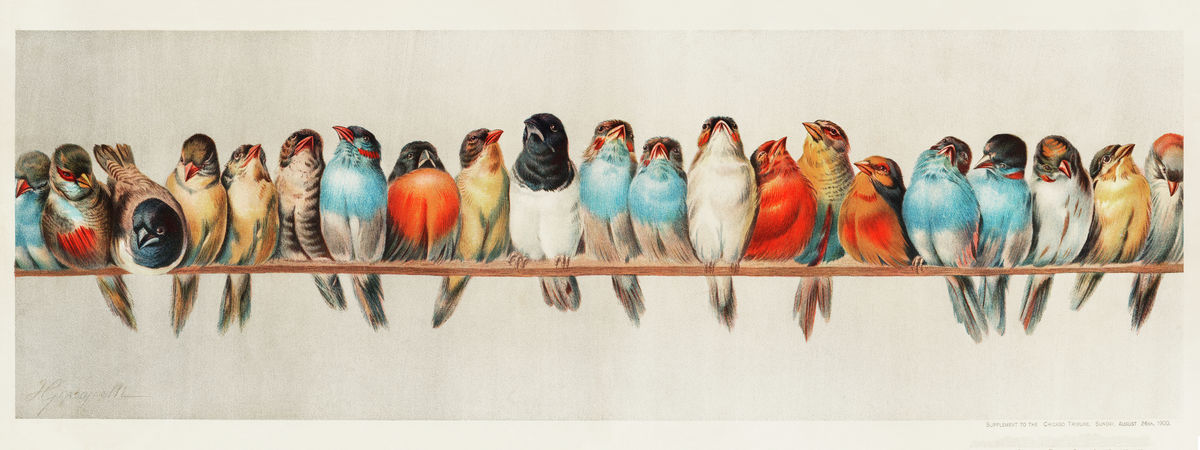 A Perch of Birds by Hector Giacomelli - 1880