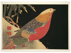 Golden Pheasant in the Snow by Itō Jakuchū  - 1900