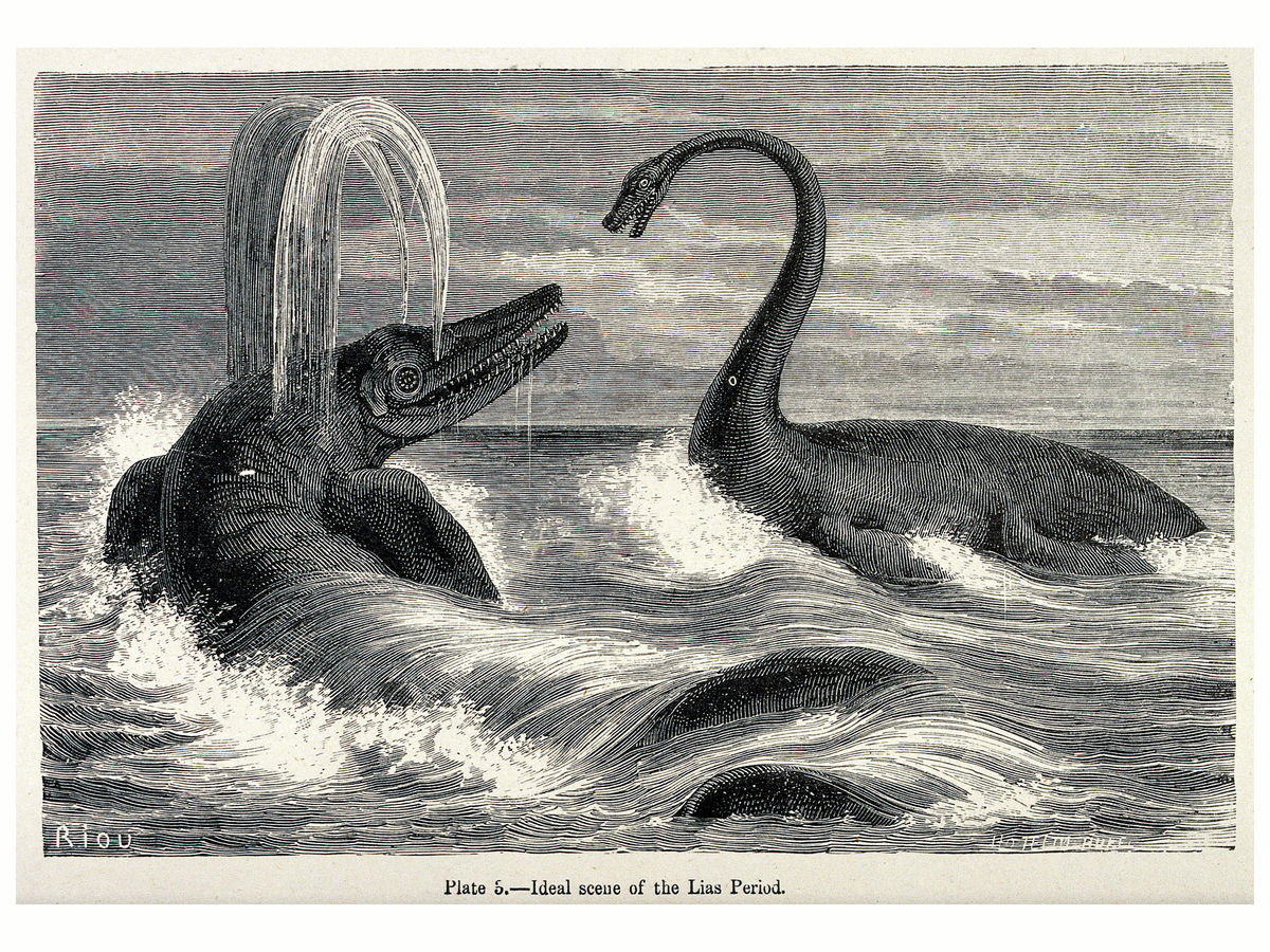 An Ideal Scene of the Lias Period With Two Sauropods in the Sea
