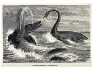 An Ideal Scene of the Lias Period With Two Sauropods in the Sea by Édouard - 1863