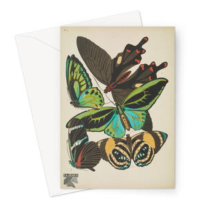 Butterflies by E.A. Séguy - 1925 Greeting Card