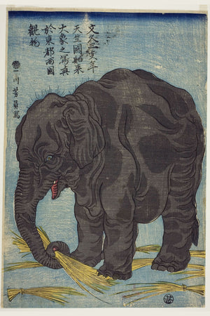 Picture of Large Elephant from India by Utagawa Yoshikazu - 1863