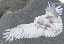 Load image into Gallery viewer, Snowy Owls