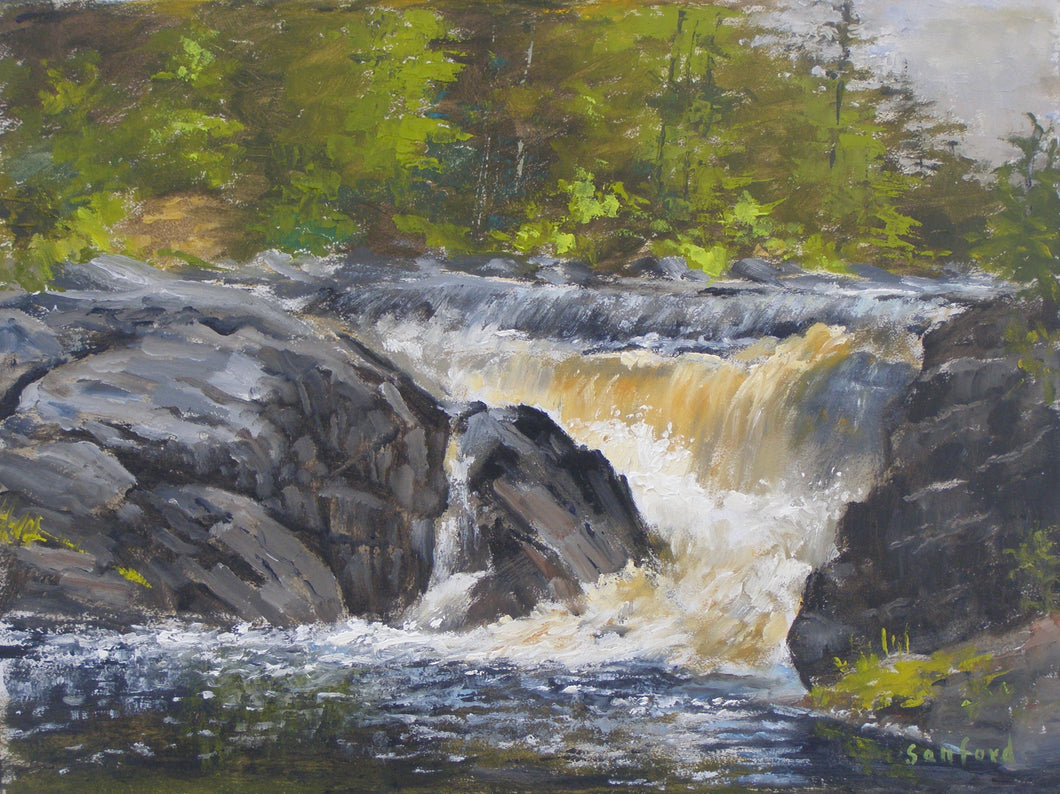 Morning At The Falls Closeup, Artist Ray Sanford