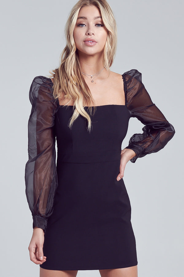 Lost In Paris Organza Mini Dress