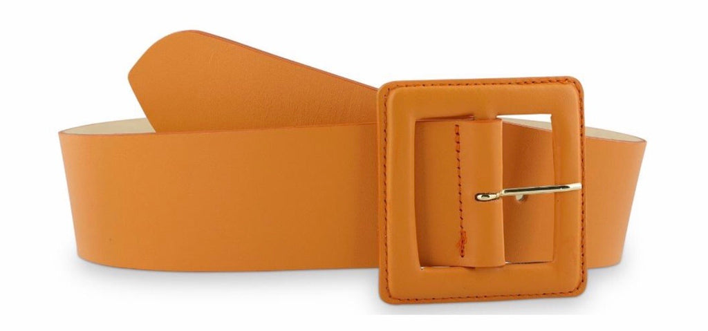 Hampton Bays Belt Umber orange