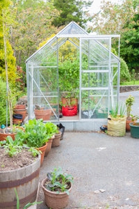 Glass in Your Vegetable Garden