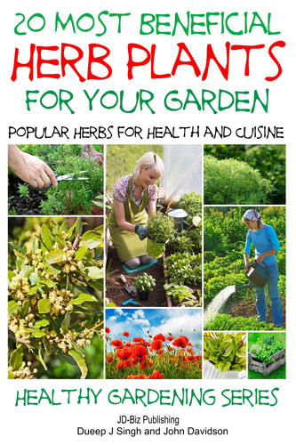 20 Most Beneficial Herb Plants For Your Garden