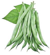 Load image into Gallery viewer, Peas and Beans in Your Garden