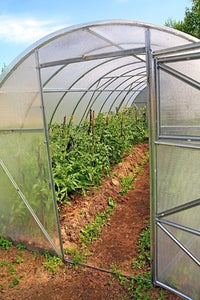Introduction to Sustainable Greenhouse Gardening