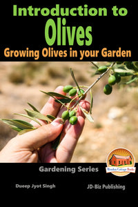 Introduction to Olives