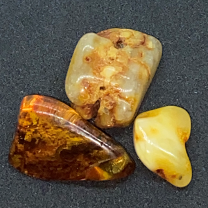 Tip of The Day - Baltic Amber