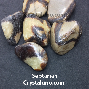 Septarian (Dragon's stone) Tumbled Stone
