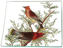 Load image into Gallery viewer, Cedar Cardinals Glass Square Plate 6 x 6""