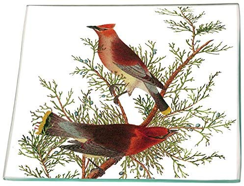 Cedar Cardinals Glass Square Plate 6 x 6""