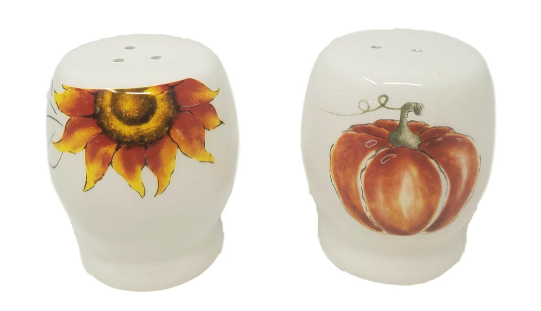 Fall Thanksgiving Pumpkin Harvest Ceramic Salt and Pepper Shaker Set