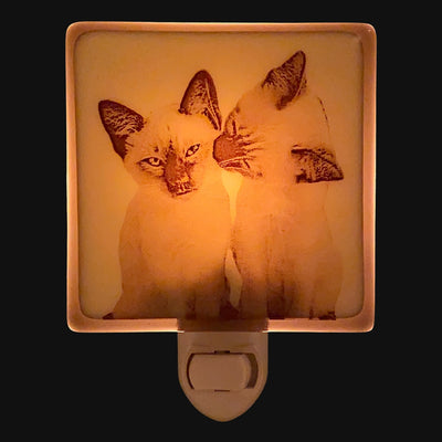 Kissing Siamese Kittens Night Light