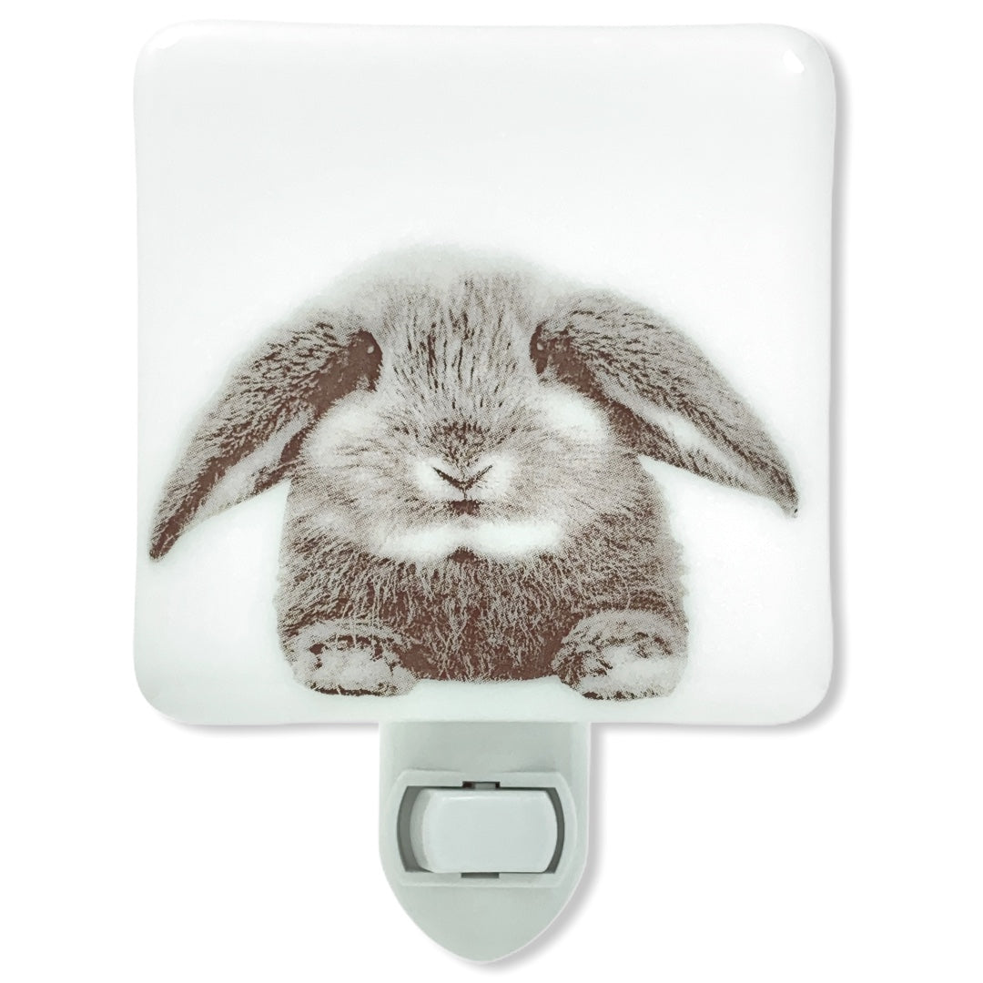 Floppy Eared Bunny Rabbit Night Light