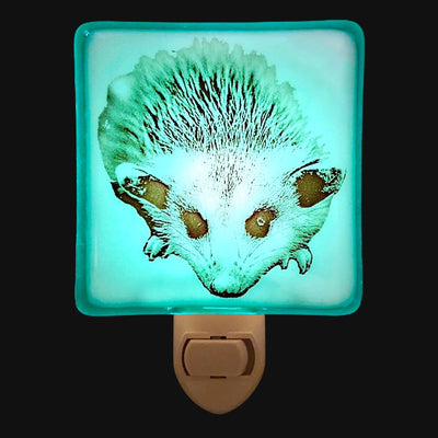 Possum Baby Night Light
