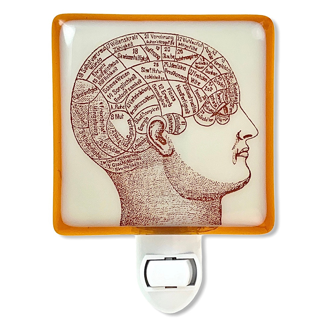Phrenology Head Anatomy Night Light