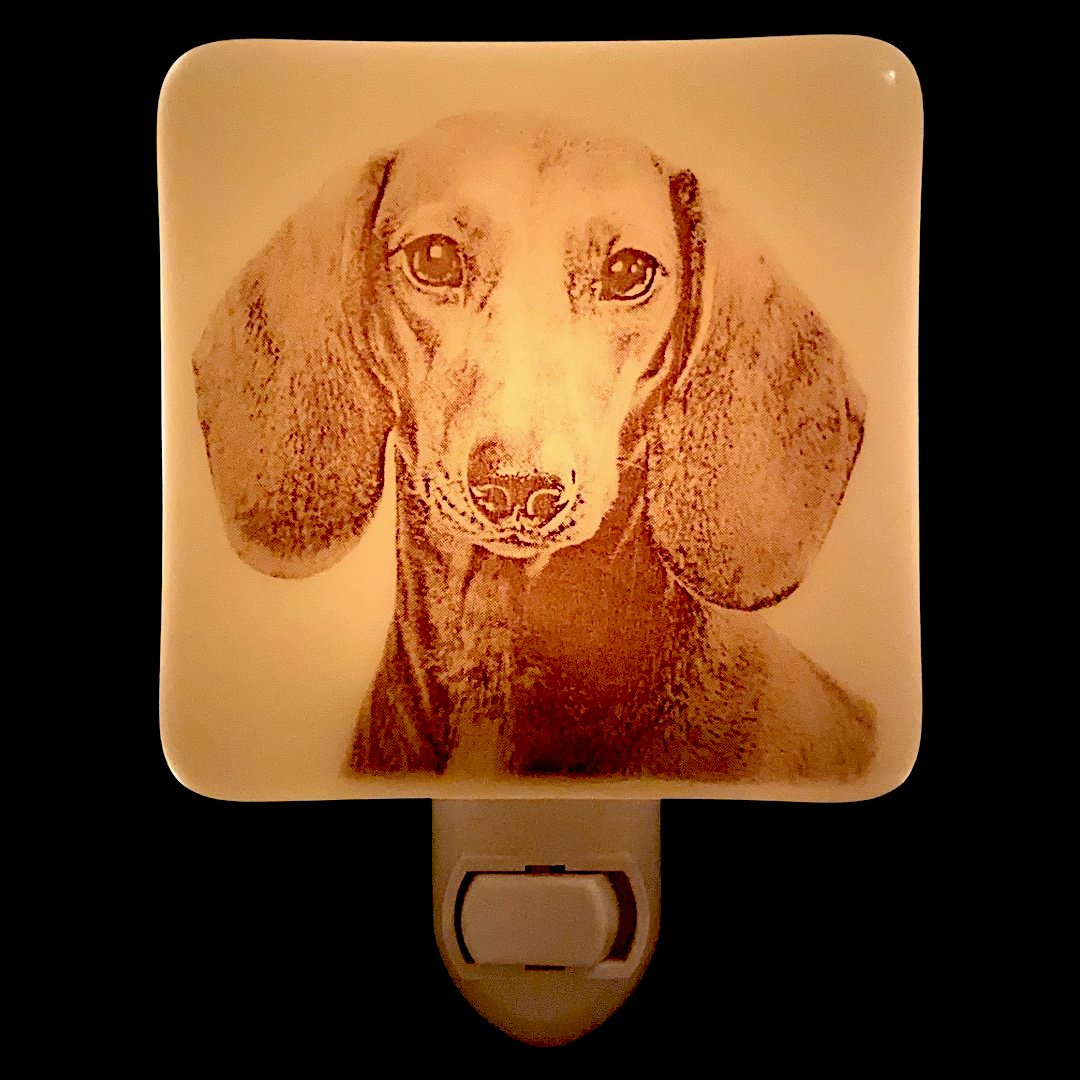 Dachshund Face Wiener Dog Night Light
