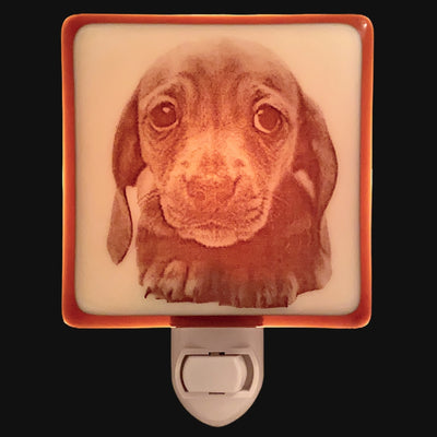 Dachshund Wiener Dog Puppy Night Light